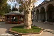 Alipaşa Cami