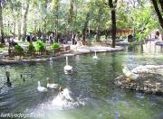 Kurtulus Park.