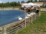 Doğal Yaşam Parkı
